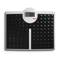 Seca 813 - Pèse-personne électronique