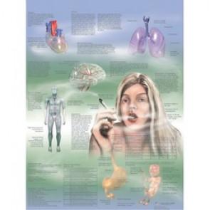 PLANCHE ANATOMIQUE dépendances du tabac