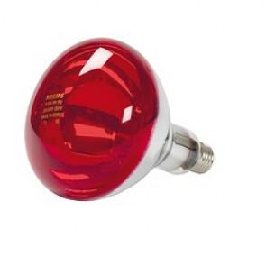 Ampoule 250 watts de rechange pour lampe infrarouge LID 250 Watts